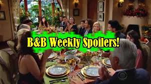 the bold and the beautiful spoilers week of november 21