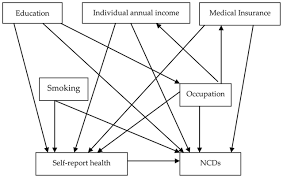 socioeconomic status and prevalence of chronic non communicable
