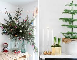 small potted trees decor
