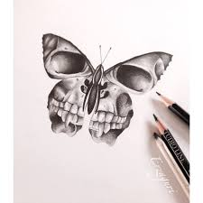 collection of 25 skull butterfly design