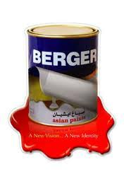 report on overall business of berger paint assignment point