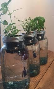 indoor aquaponics kit mason jar aquaponics system indoor herb garden