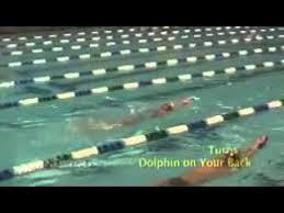 tutorial renang gaya kupu kupu cara berenang gaya kupu kupu professional mp3 mp4 full hd hq
