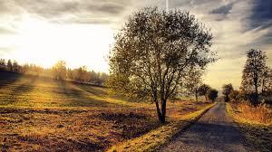 1920x1080 beautiful road hill trees sun desktop pc and mac wallpaper