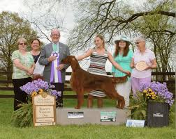 belgian sheepdog national specialty 2014 finger lakes kennel club inc u2014 sponsoring events for dog