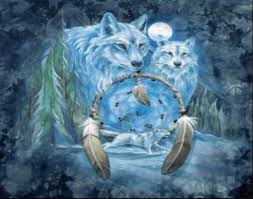 pictures of wolves and cats wolf dreamcatcher