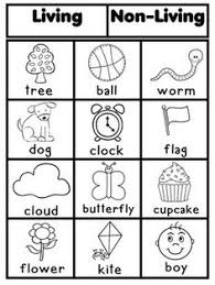 living and nonliving sort freebie science living things