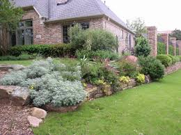texas native plants native texas landscaping plants home decorating interior design