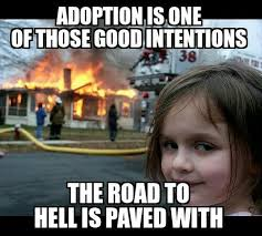 Adoption Meme - 20 best you know you re adopted when images on pinterest