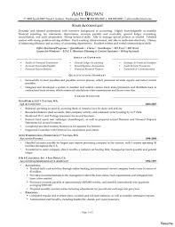 sle student resume summary statements accountant resume summary accounting statement of qualifications