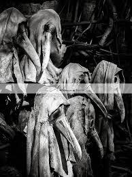 vintage black and white halloween images printable art download creepy halloween antique photograph bird