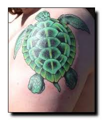 the 25 best small turtle tattoo ideas on pinterest small animal