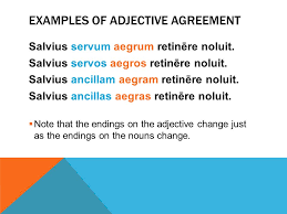adjective agreement which word is being modified ppt download