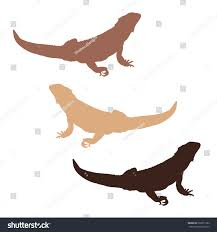 3 colored bearded dragon silhouettes stock vector 230211382