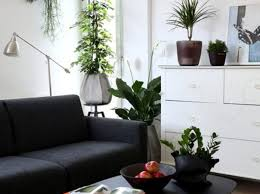 imitation plants home decoration plant how to use todays realistic fa amazing fake plants for