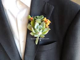 boutineer cost succulent boutonniere succulents