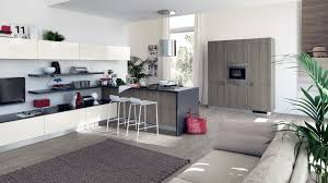 cozy minimalist kitchen style with grey kitchen cabinet and