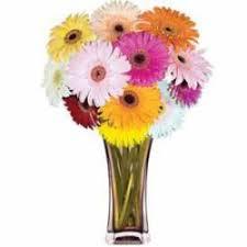 Flowers Killeen Tx - send flowers killeen texas tx order flowers online
