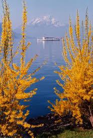 597 best lucerne city switzerland images on pinterest lucerne