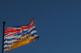 Four Flags Area Credit Union Fringe Benefits Fifteen Other Bc Parties That Want Your Vote