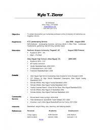 Job Resume Key Qualifications by Divine Examples Of Professional Resumes Awesome 10 Download Resume