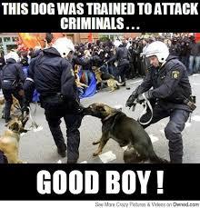 Law Dog Meme - quanto s law new legislation enacts tough penalties for killing