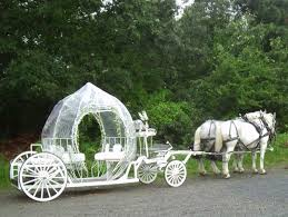 pumpkin carriage carriage company cinderella pumpkin carriage booked