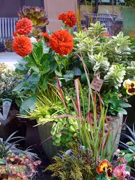 Flower Garden Ideas For Small Yards Others Beautiful Ravenna Gardens Collections U2014 Paralegalpie Com