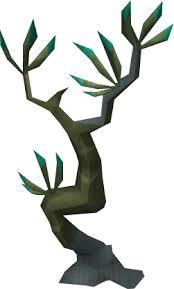 Fruit Trees Runescape - spinebeam tree runescape wiki fandom powered by wikia