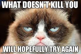 Feel Better Meme - 21 grumpy cat memes you can relate to every monday of your life