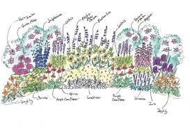 plant a mixed flower border garden diy armstrong garden centers