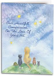 sympathy cards for pets sympathy cards show compassion for the loss of a pet