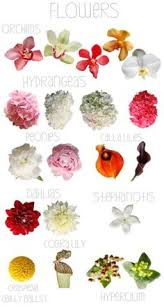wedding flowers list of wedding flowers list