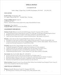 example professional resumes professional gray resume template
