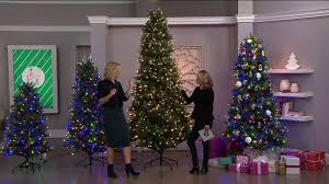ed on air santa s best blue royal spruce tree by degeneres