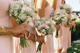Baby S Breath Bouquets Wear Pink Dresses Hold Babies Breath Garden Rose Bouquets