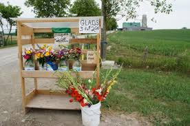flowers for sale misc flowers for sale along countryside road ontario photos