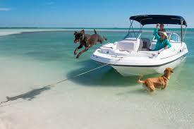 kayak tours in the florida keys sugarloaf key u0026 key west fl