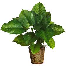 silk plants nearly large leaf 29 inch real touch philodendron silk