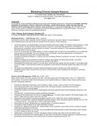 executive summary example for resume internet marketing resume sample example cover letter gallery of marketing president resume