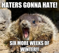 Groundhog Meme - these groundhog punxsutawney phil memes will get you through the
