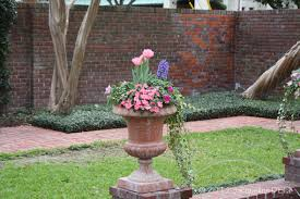 Plant Combination Ideas For Container Gardens - easy to create container gardens for houston summers