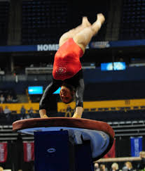 Hom Photo Album Photo Gallery Sec Gymnastics Championship Official Athletics