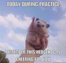 Hedgehog Meme - 15 perfect hedgehog memes to make you laugh through the weekend i