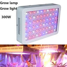 grow room lighting requirements grow light l full spectrum grow l 300w led 85 265v for
