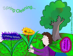 springcleaning experts share their thoughts on spring cleaning a frontline