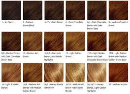 loreal hair color chart ginger the 25 best hair color charts ideas on pinterest garnier hair