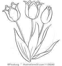 flowers tulips coloring cage detailed coloring pages for kids