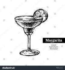 vintage martini illustration hand drawn sketch cocktail margarita vintage stock vector
