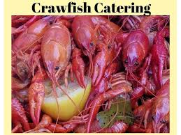 crawfish catering houston healthy and delicious crawfish catering services in houston other